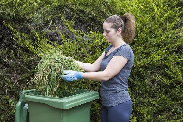 Green Garden Waste popularity soars this summer